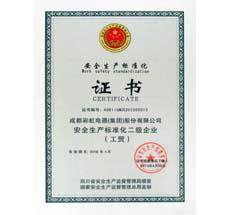 安全生产标准化二级企业